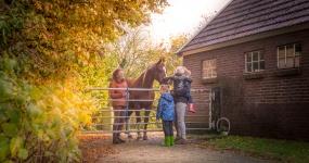 Hoeve Gasteren - Therapie Met Paard Foto 1