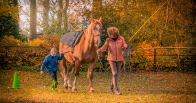 Hoeve Gasteren - Therapie Met Paard Foto 2